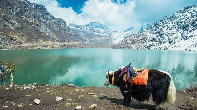 Sikkim (Darjeeling & Gangtok)