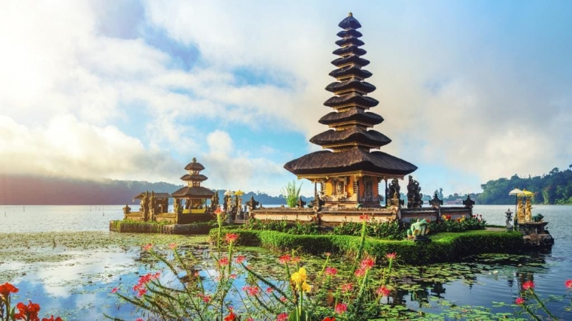 LTC Package for Bali